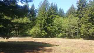MLS# 1700194 Address: 000 Knotty Pine