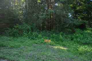 MLS# 20190374 Address: Lot 33 Bell Hole Loop